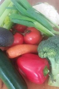veg blog 2